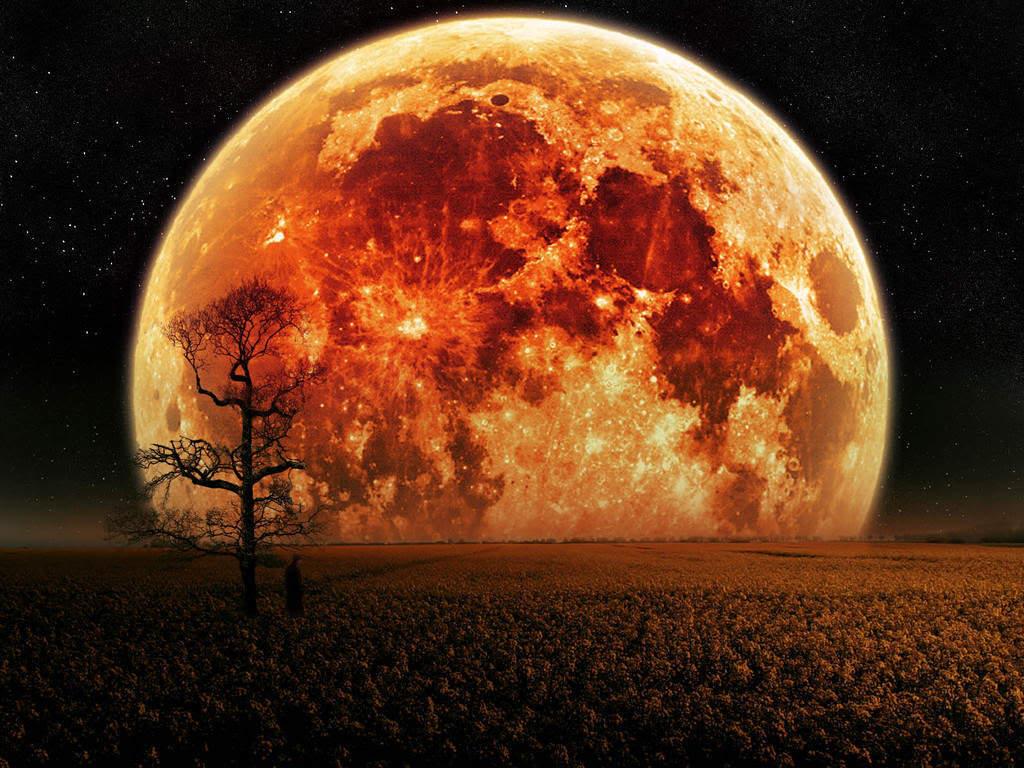 Wallpaper - orange moon